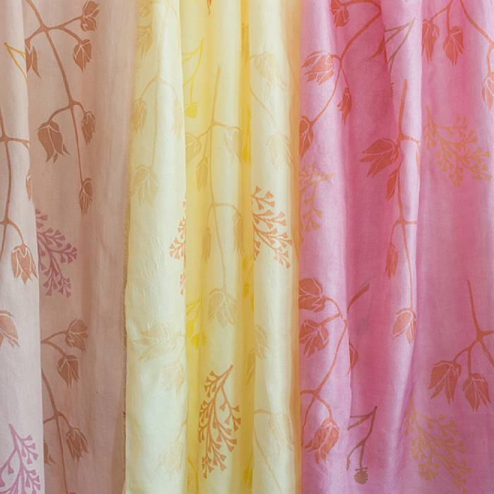 Teaser image for Printing and Painting with Natural Dyes: Online Webinar