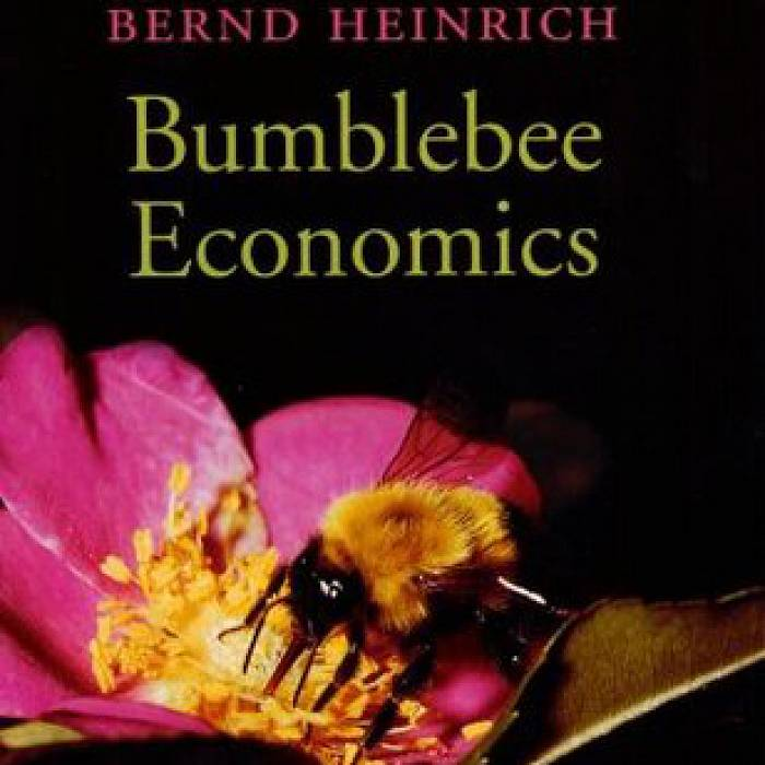 Teaser image for Bees and Flowers: Behavior, Physiology and Ecology