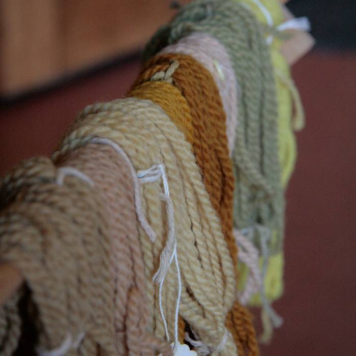 Teaser image for In Search of Color: Winter Natural Dye Workshop