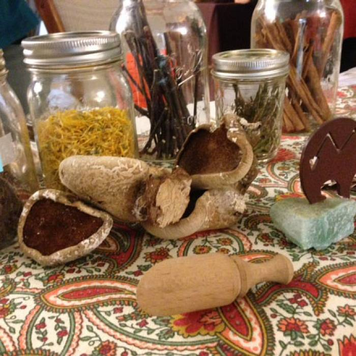 Teaser image for Herbalism Immersion: Traditional Herbal Apotheca