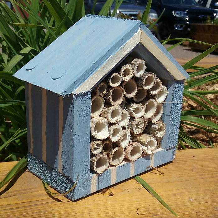 Teaser image for Pollinator Palaces: Mason Bee Houses Built by Kids