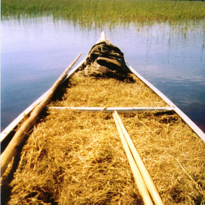 Teaser image for Traditional Harvest of Wild Rice
