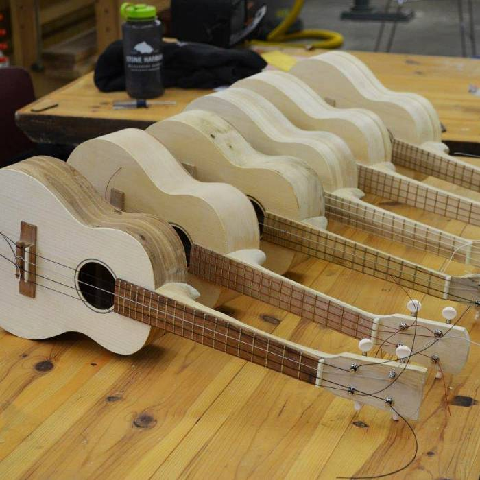 Teaser image for Ukulele: Build Your Own